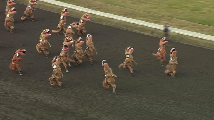 Фото №1 - В Вашингтоне сотрудники компании устроили забег в костюмах тираннозавров для поддержания корпоративного духа (видео)