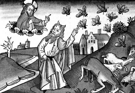 Слабоумие и отвары: чем лечились от всяких холер наши предки до изобретения анальгина иалка-зельтцера.