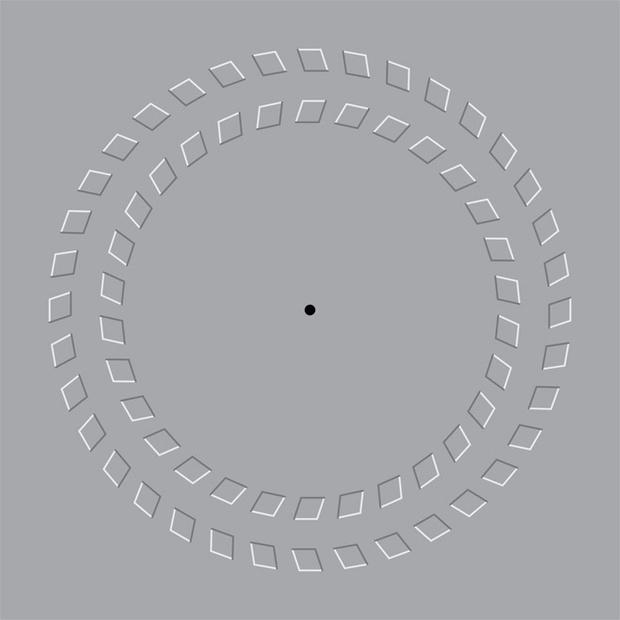 Фото №13 - Как лучшие оптические иллюзии обманывают твой мозг