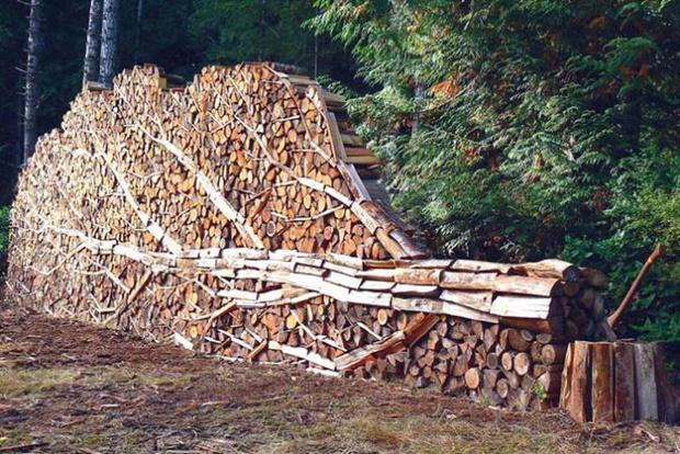 Фото №4 - Как играть в тетрис дровами