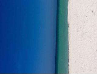 Новая оптическая иллюзия: пляж или дверь?