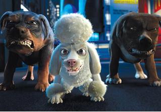 Погляди на самую страшную в мире собаку! ВИДЕО
