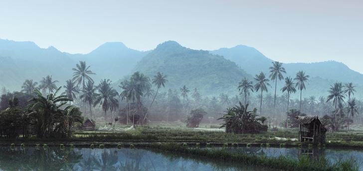 Фото №2 - У кого чего Бали