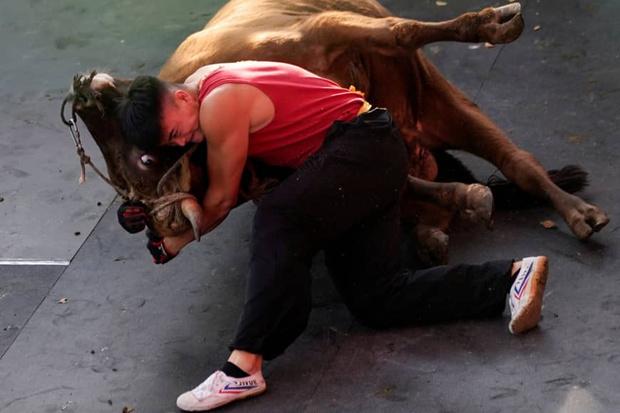 Фото №2 - Китайский мастер боевых искусств сражается с быком (видео)