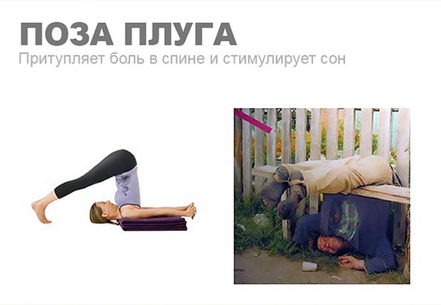 Фото №1 - Уроки йоги для пьяниц: 10 классических поз