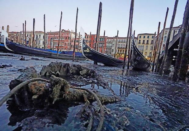 Фото №1 - Полюбуйся (с содроганием), как выглядят улицы Венеции без воды!