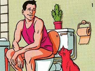 Фото №1 - Как приучить кошку к унитазу