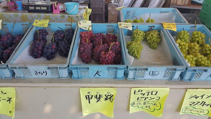 Фото №1 - В Японии арестовали старика за кражу одной виноградинки