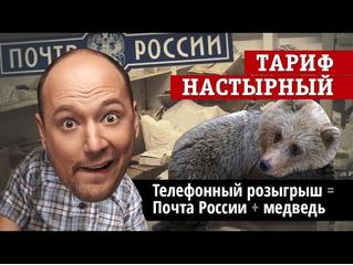 Злоключения карлика-блогера, путешествующего в посылках «Почты России» (Тариф «Настырный» № 3)