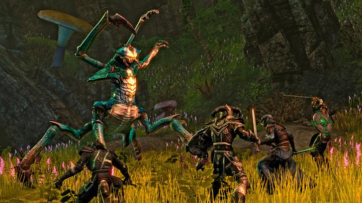 Фото №5 - 5 причин потратить все деньги на онлайн-игру The Elder Scrolls Online