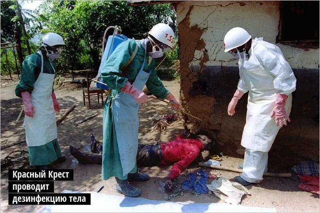 Красный Крест проводит дезинфекцию тела