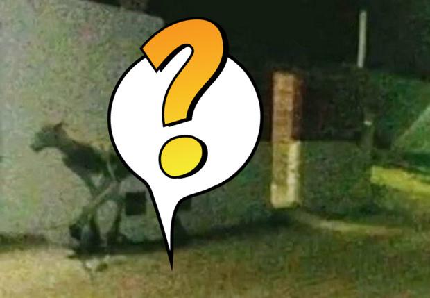 Фото №1 - Загадочный монстр держит в страхе целую деревню! Свежайшая интернет-страшилка с ФОТО!
