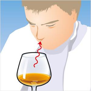 Фото №5 - Как правильно пить