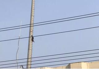 В Китае пьяный мужчина решил стать Человеком-пауком и завис на огромной высоте вниз головой (фото)
