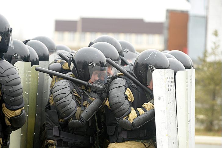 Фото №5 - Толпой и еще толпее: рассказ о том, почему люди, собравшиеся большими группами, начинают вести себя странно