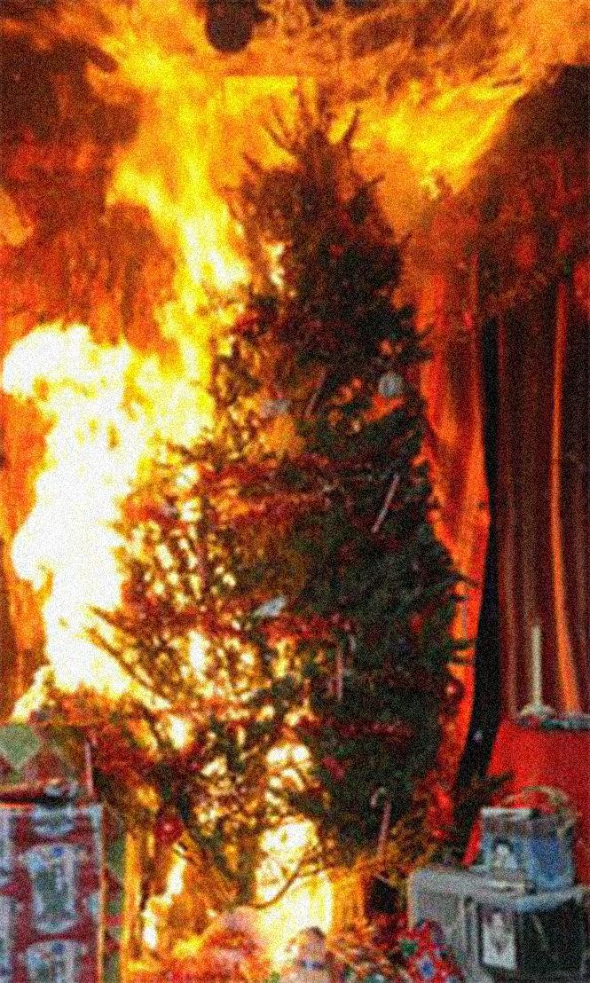Фото №2 - Елочка, зажгись! 14 фотографий новогодних разрушений