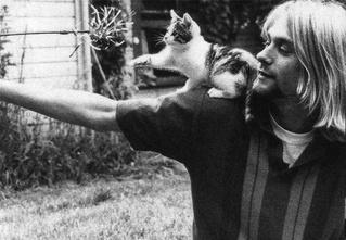 15 лучших цитат и высказываний Курта Кобейна