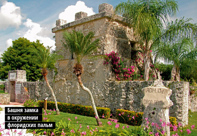 Башня замка  в окружении  флоридских пальм