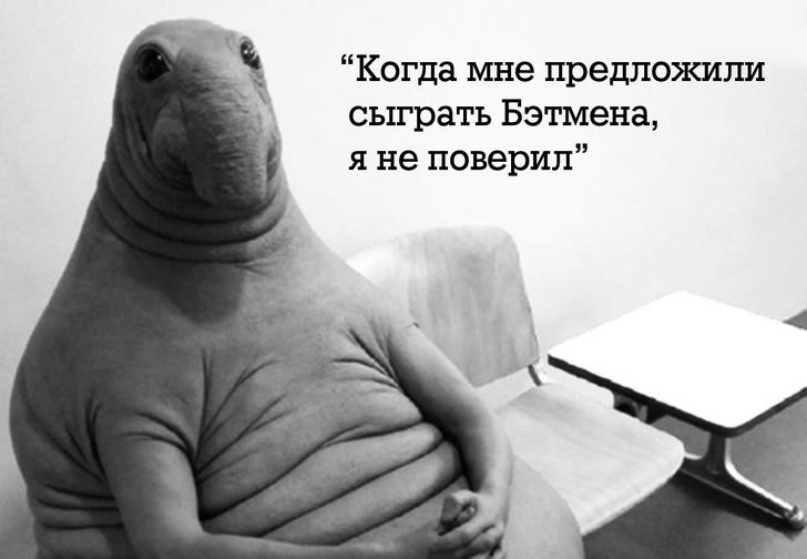 Фото №1 - Правила жизни Ждуна