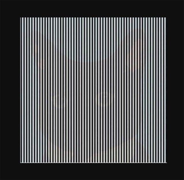 Фото №1 - Оптическая иллюзия: потряси головой, чтобы увидеть фото, спрятанное в полосках
