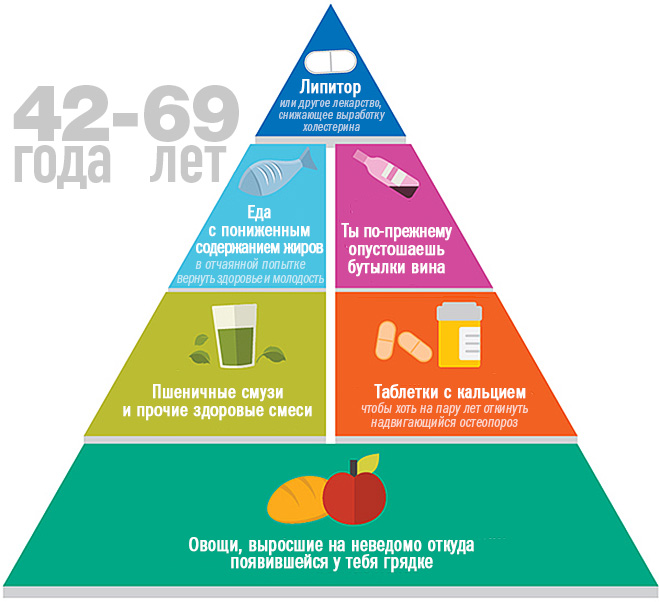 Пищевая пирамида в 42-69