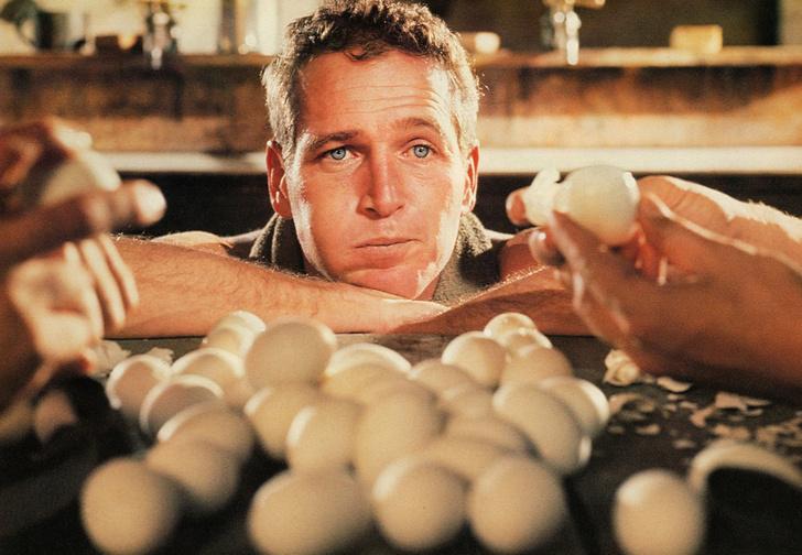 Фото №1 - Правда ли, что можно умереть, если зараз съесть тридцать вареных яиц?