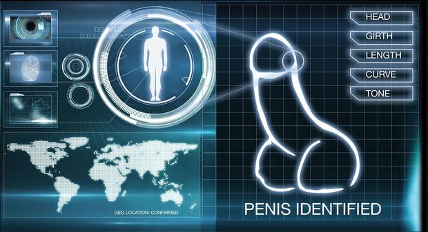 Фото №1 - К черту пароли и отпечатки пальцев! Создана система входа на сайт по фотографии пениса!