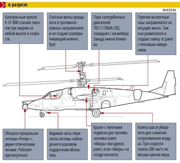 Ка-52 «Аллигатор» в разрезе