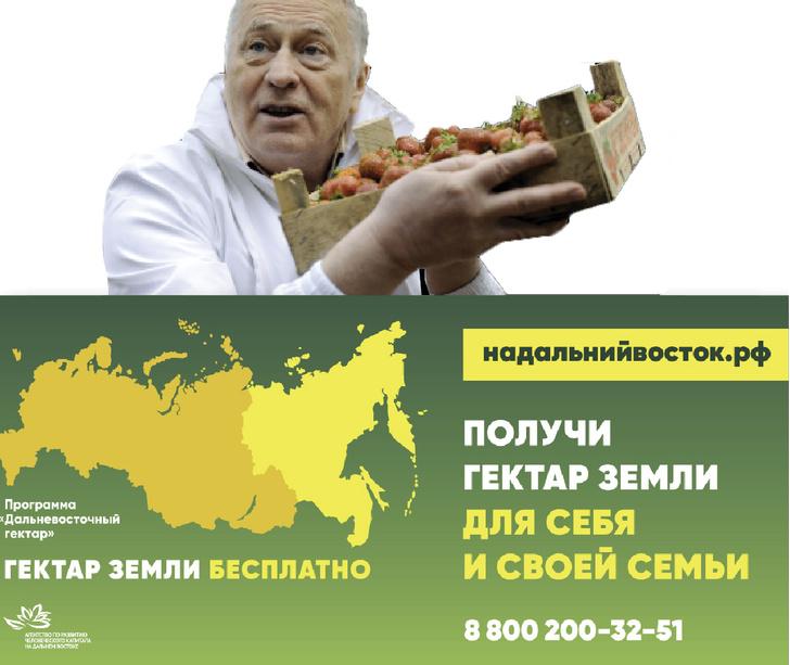 Фото №3 - 14 примеров того, как в России уживаются взаимоисключающие явления
