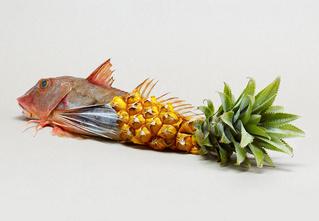 Лучшие ГМО-продукты последнего времени. Не бойся их, они хорошие!