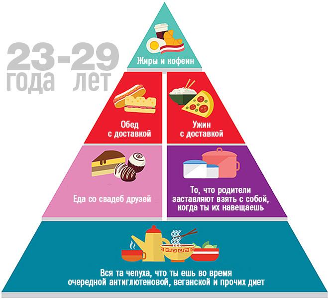 Пищевая пирамида в 23-29 лет