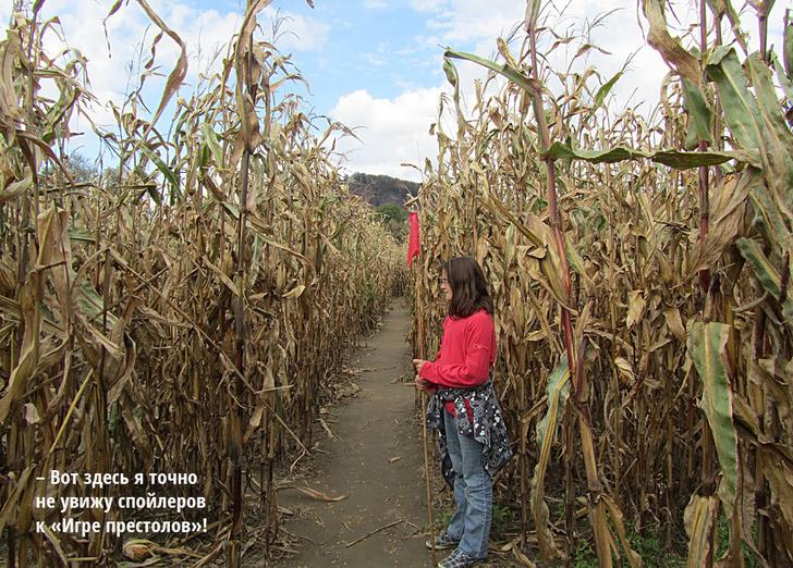 Фото №2 - Сельхоз-культура: фермер, рисующий кукурузой на поле