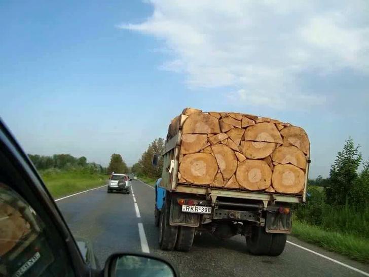 Фото №13 - Как играть в тетрис дровами