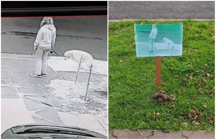Фото №2 - Мужчина придумал оригинальный способ пристыдить собаководов, которые не убирают за собаками
