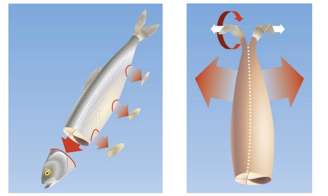 Как избавить  селедку от костей: пошаговая инструкция в картинках