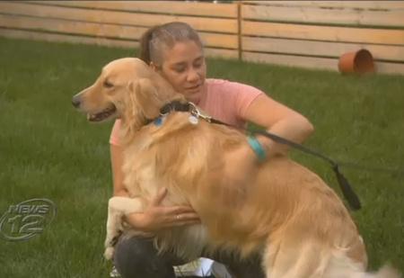 Семья купила собаку, а оказалось, что она всего лишь взяла ее в аренду