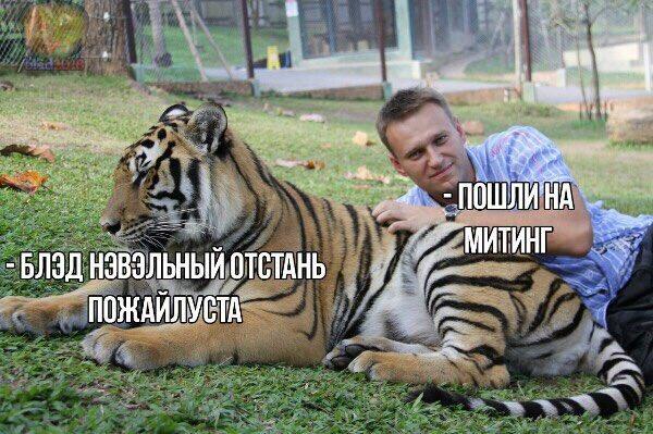 Фото №23 - Самые смешные картинки недели и Нэвэльный