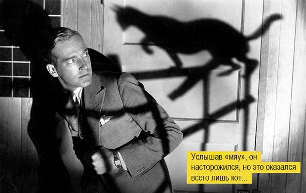 Фото №1 - Если черный кот тарелку разобьет: Откуда взялись известные суеверия