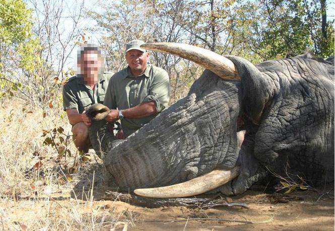 Возмездие: охотника насмерть раздавил слон, которого тот сам же и пристрелил