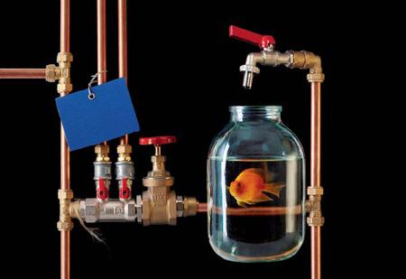 Вода как воля и представление: несколько свежих научных фактов, которые перевернут твое представление о воде!