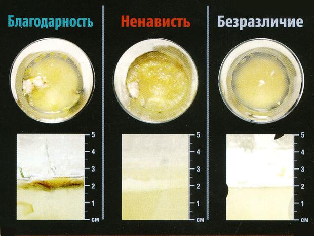 Фото №7 - Вода как воля и представление: несколько научных фактов, которые перевернут твое представление о воде