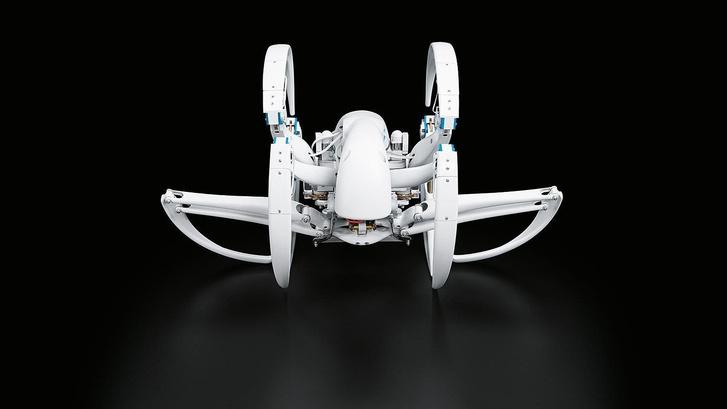 Фото №1 - Еще один безумный робот — на этот раз паук (ВИДЕО)