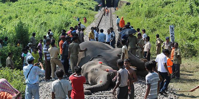 Фото №21 - Самые впечатляющие фото железнодорожных катастроф