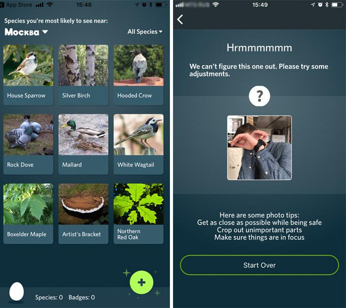Фото №2 - Новое приложение — Shazam для окружающей природы!