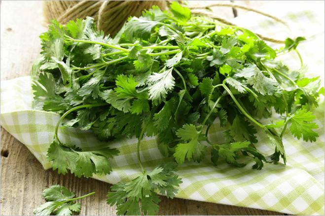Фото №6 - Как вырастить съедобную зелень на подоконнике: кинза, лук, базилик и не только