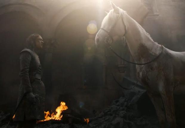 Фото №1 - Вот что значит белая лошадь, которую встретила Арья в финале пятой серии «Игры престолов»