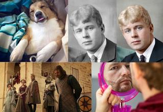 Лучшие шутки про собак жены Шувалова, кровожадный тест по «Игре престолов» и другие самые интересные статьи этой недели