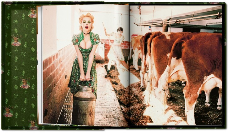 Фото №5 - Эротический альбом о немецких девушках!