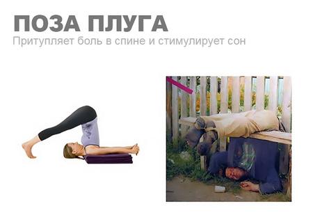 Уроки йоги для пьяниц: 10 классических поз