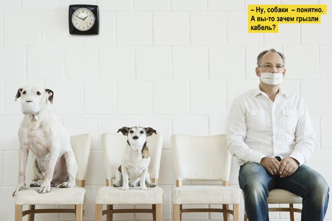 Фото №2 - Все, что мужчине нужно знать про ОРВИ и грипп